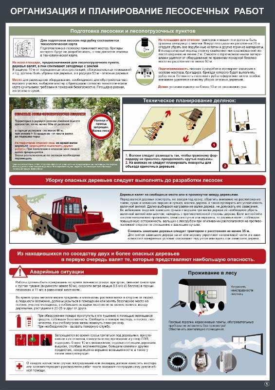 По работах охране лесосечных инструкции труда безопасность при